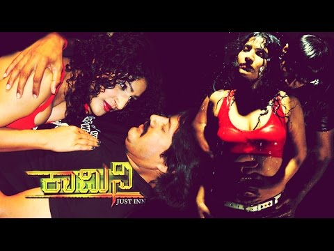 2013 Full Kannada Movie: Kamini video
