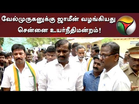 MHC grants bail to TVK Party Leader Velmurugan | Detailed Report | #TVK #Velmurugan