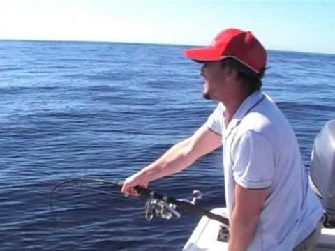Mako shark fishing 2009