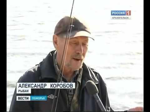 мир рыболова самара