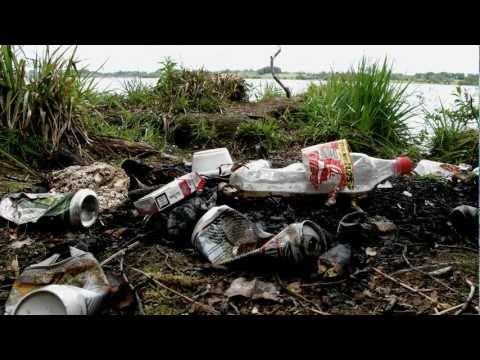Shocking discovery on Lough Owel, Ireland.