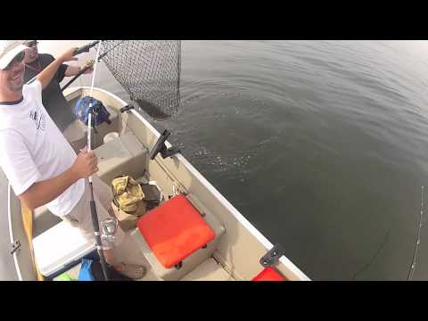 Sandy Hook Fluke fishing NJ 8-24-2012