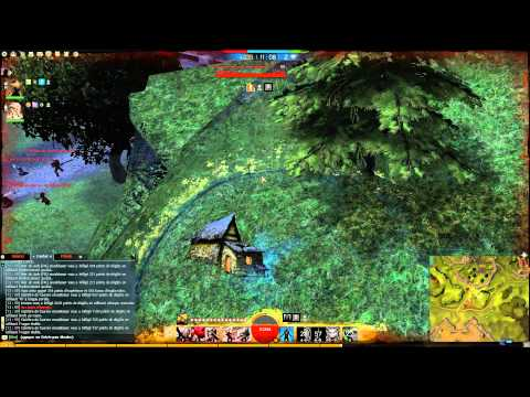 Guild Wars 2 - Thief crit damage WvW Uncut 2