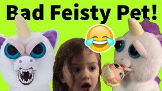 Funny Feisty Pet Unicorn terrorizes family.  Funny pranks, Unicorn attacks kids, makes funny jokes