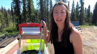 A Day at Our Off Grid Cabin | Life in Alaska