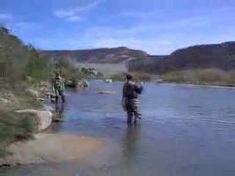 Fly fishing San Juan River