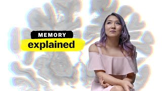 Memory, explained | Narrated by Emma Stone