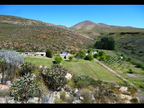 Farmhouse base of the South African leopard, caracal and Cape biodiversity expedition