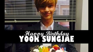 Yook Sungjae - You Are My Treasure ♪ (by: T-ara ♥)