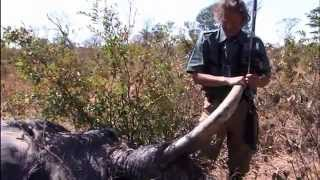 Shocking Muzzle Loader Elephant Hunt
