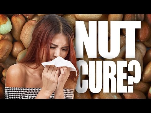 Peanut Allergy Cure?