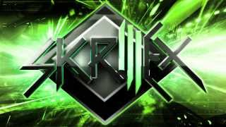Skrillex Video - Skrillex Dubstep MegaMix 2014