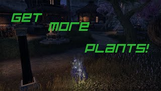 Making money and getting plants! in The Elder Scrolls Online