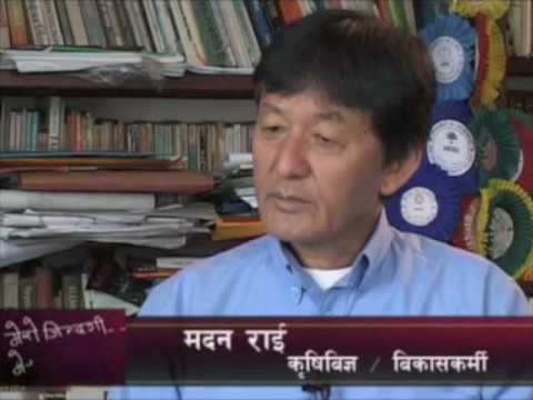 Madan Rai Interview - Antenna Foundation Nepal - Part 1