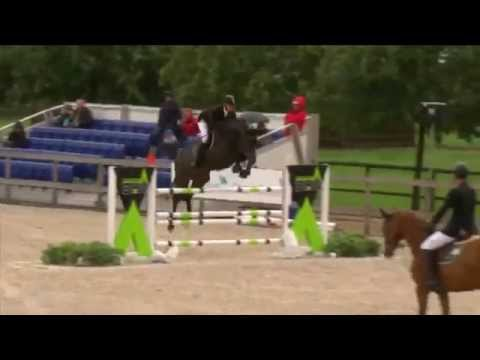 change_video_youtube2('dADwBNaxKfE','ELDORADO DE HUS - Day 1 - FEI World Breeding Jumping Championship Final');