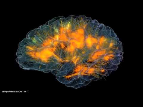neuroscapelab