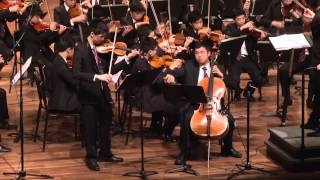 Brahms Double Concerto -- Movt. 1 (Aaron Chan, Jeffrey Chan / Samuel Pang / DBS Orchestra)