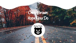 Chris Brown - Hope You Do (Lyrics)