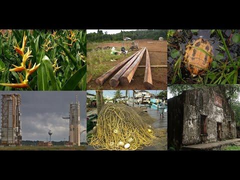 15. ΓΑΛΛΙΚΗ ΓΟΥΙΑΝΑ - FRENCH GUIANA (video & photos)