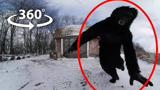 360 Bigfoot | VR Horror Experience