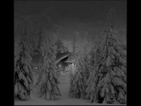 Forest Stream - Snowfall