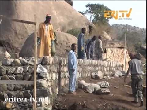 Eritrean Arabic News  10 May 2013 by Eritrea TV