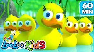 Five Little Ducks - Amazing Songs With Animals | LooLoo Kids