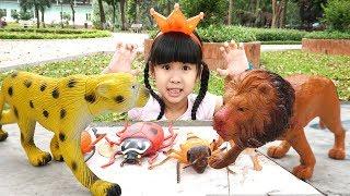 Trò Chơi Bé Bún Đi Săn Bắt Con Hổ Con Sư Tử Con Voi và Con Bọ Cánh Cứng ♥ CreativeKids ♥