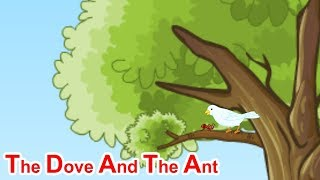 The Dove And The Ant | Story for Babies | Sapna Advertising Co | Videos for Kids