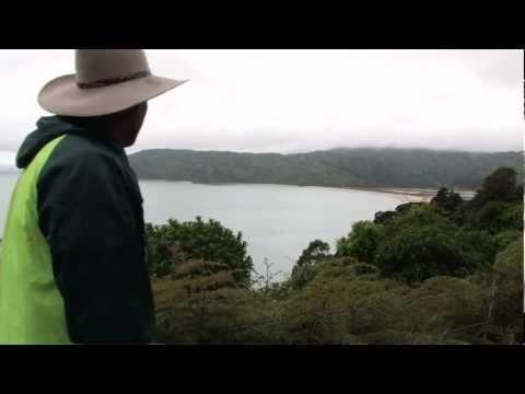 Abel Tasman Nat. Park, Takaka, Nelson, New Zealand Travel Video Guide