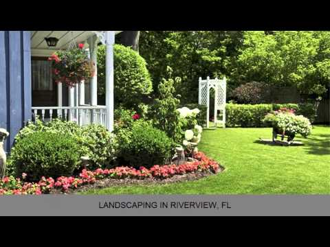 Veteran Landscape Landscaping Riverview FL