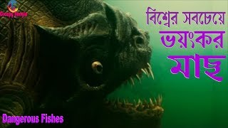 বিশ্বের সবচেয়ে ভয়ংকর মাছগুলো | Most dangerous fishes in the world in Bangla | Creepy Bangla