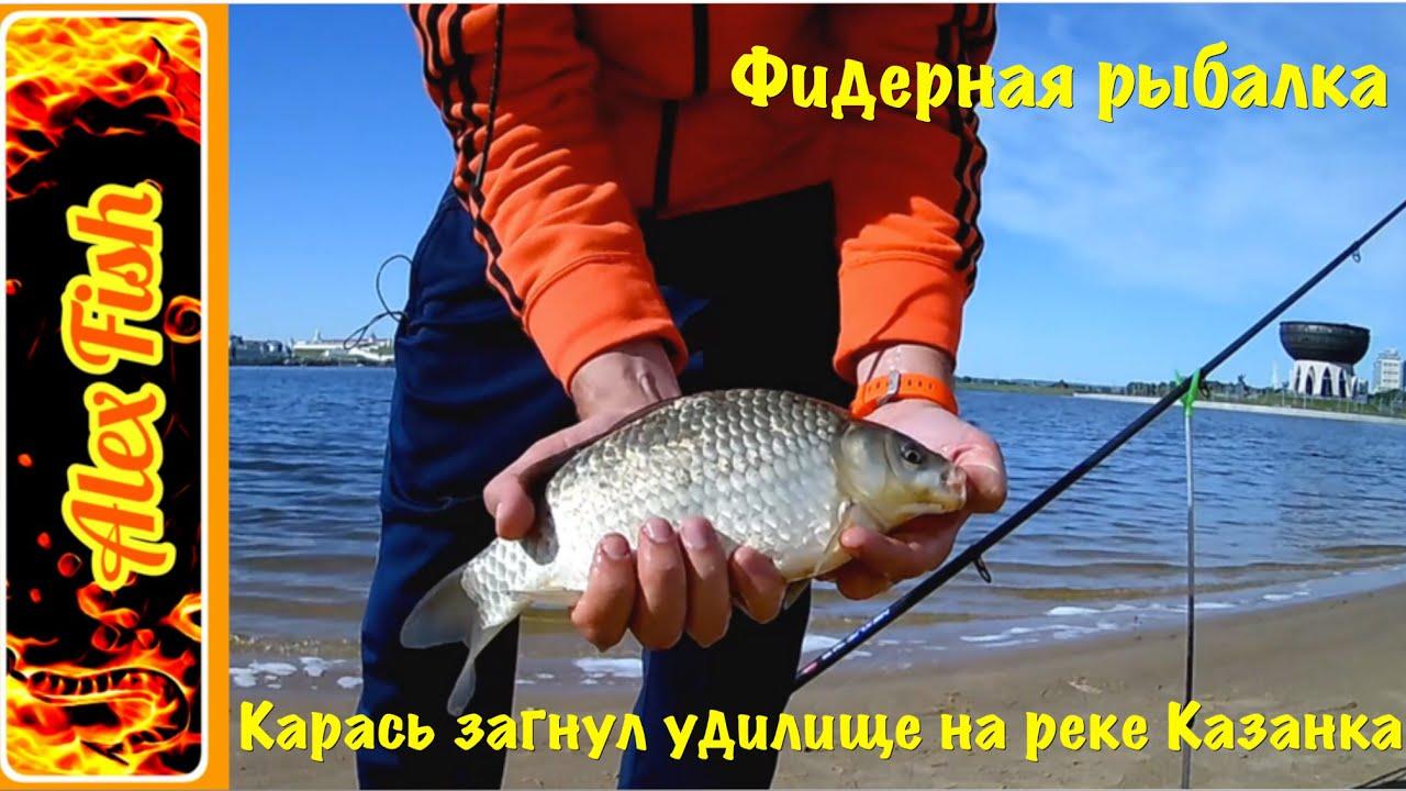 рыбалка на крупного карася бесплатно