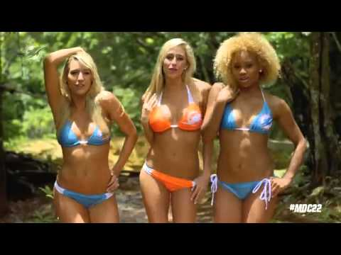 Miami Dolphins Cheerleaders  22  by Taylor Swift