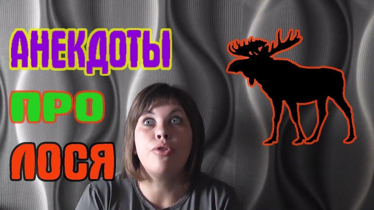 Анекдот Про Лося Скачать Видео