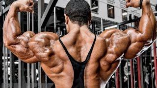 Roelly Winklaar - Best Workout - Bodybuilding Motivation 2016