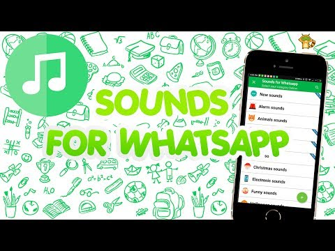 Ringtones for Whatsapp: Notification & Beep Sounds APK Cover