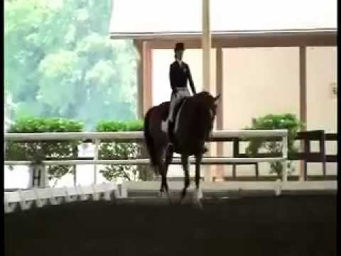 Young Rider Dressage Freestyle Bon Renoir