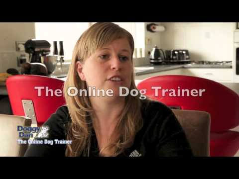Stop Dogs Barking Testimonial - The Online Dog Trainer