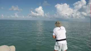 :: Sport Fishing TV :: Tarpon Rod in Action