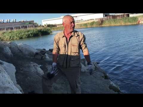где копать червей для рыбалки самп рп