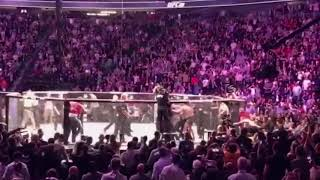 ufc 229 khabibs team attacks connor mcgregor (video from audience) Behind scene