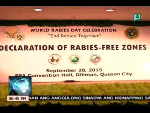 News@6: World Rabies Day, ginunita sa Bureau of Animal Industry || Sept. 29, 2015