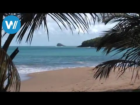 Places to travel: Guadeloupe - Caribbean Moments