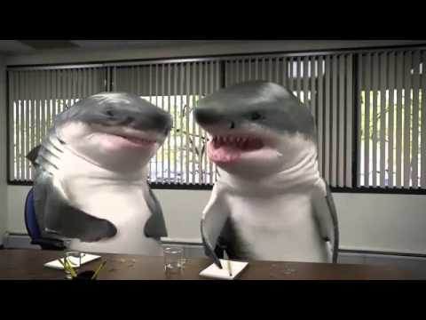 ibelieveinadv.com Snickers Focus Group Sharks