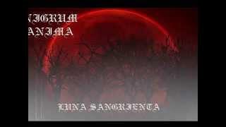 download lagu Nigrum Anima - Luna Sangrienta  Promo gratis