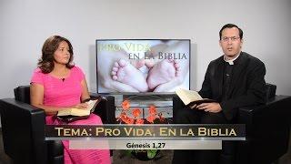 TV En Fuego - #45 Padre Ramón Decaen - Pro Vida, En la Biblia