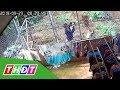 Camera ghi lại cảnh gã đàn ông trộm đồ lót phụ nữ | THDT thumbnail