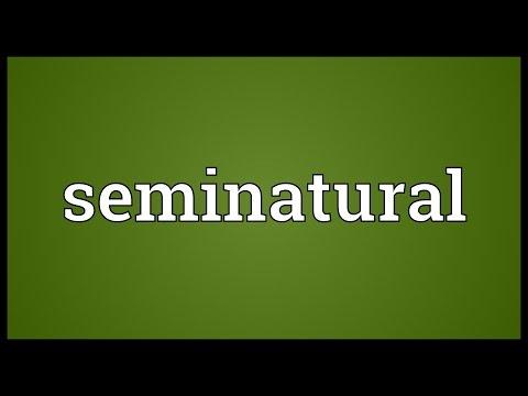 Header of seminatural