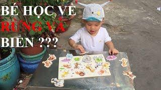 Những Bài Học đầu tiên về Rừng và Biển cho bé - GhiGhi ToysReview TV- Đồ chơi trẻ em - kids song